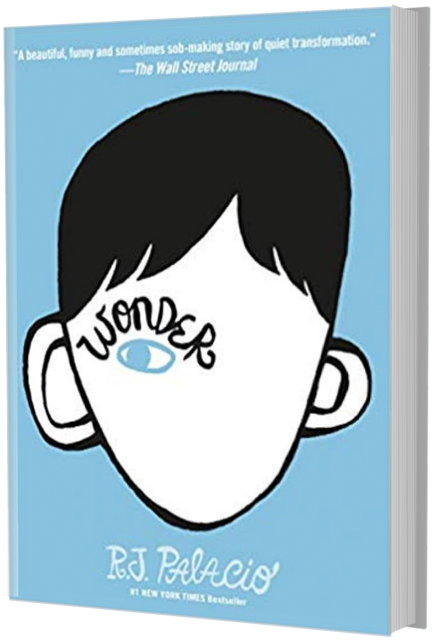 books like dairy of a wimpy kid: wonder